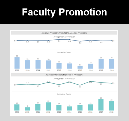 Faculty Promotion Icon